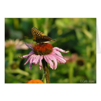Coneflower Card
