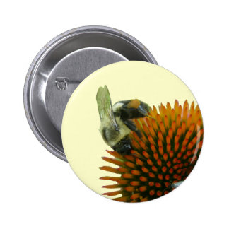 Coneflower & Eastern Carpenter Bee Items 6 Cm Round Badge