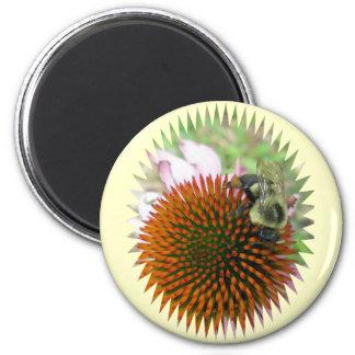 Coneflower & Eastern Carpenter Bee Items 6 Cm Round Magnet