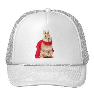 conejito cap superman mesh hat