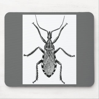 Conenose Bug - Vintage Mouse Mat