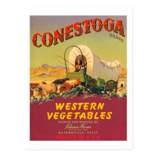 Conestoga Brand Western Vegetables Vintage Label Postcard
