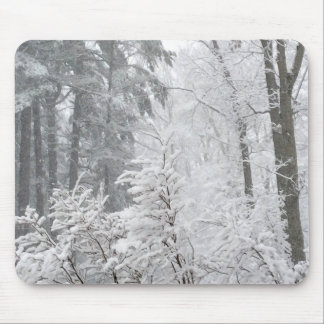 Confections in Snow --- Mouse Pad