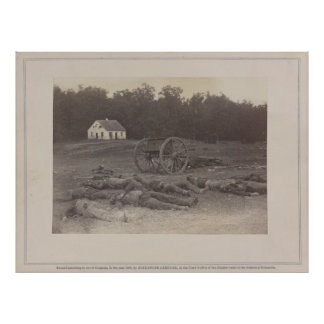 Confederate Dead after Battle of Antietam Poster
