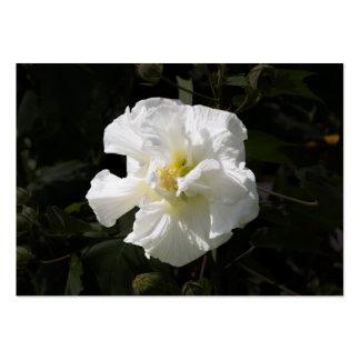 Confederate Rose Business Card Templates