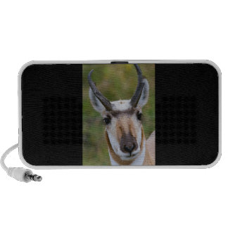 Confidence Portable Speaker