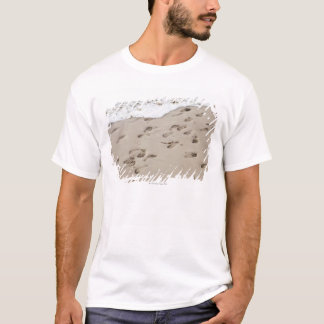 Confused Footsteps in the sand T-Shirt