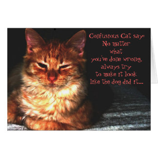Confusious Cat say: Greeting Card