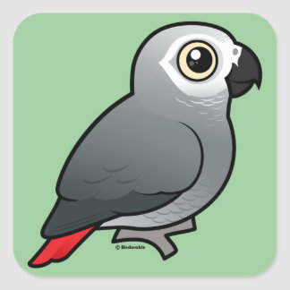 Congo African Grey Square Sticker
