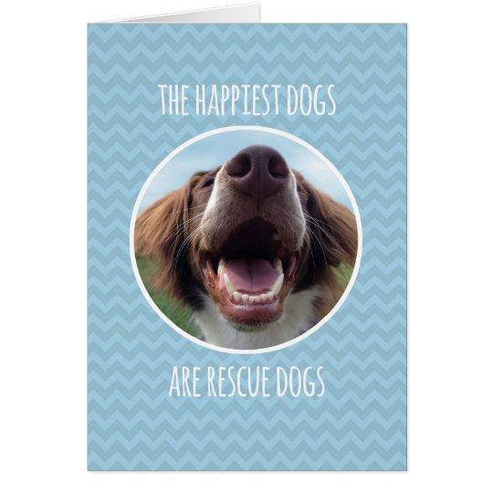 Congratulations, Adopting Rescue Dog, Blue Chevron Card
