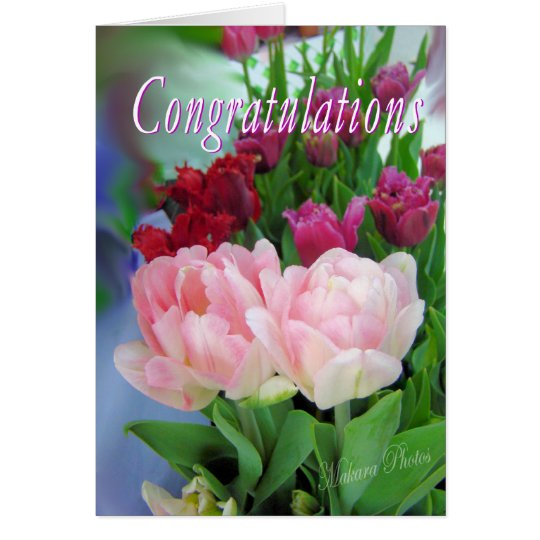 Congratulations-customise Card