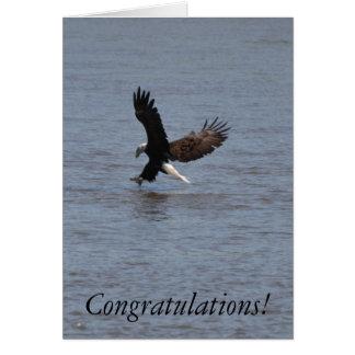 Congratulations Graduate ~ Bald Eagle Cards