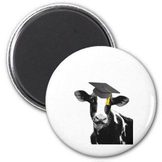Congratulations Graduation Funny Cow in Cap 6 Cm Round Magnet