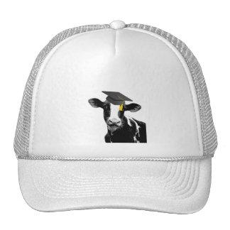 Congratulations Graduation Funny Cow in Cap Hats