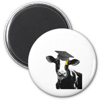 Congratulations Graduation Funny Cow in Cap Refrigerator Magnet
