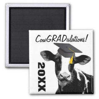 Congratulations Graduation Funny Cow in Cap Square Magnet