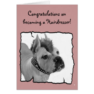 Congratulations hairdresser boxer greeting card