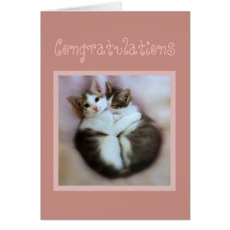 Congratulations Kittens in Love Card