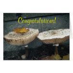 Congratulations! Mushroom Card