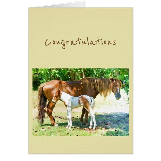 Congratulations New Addition Baby Horse Foal Card