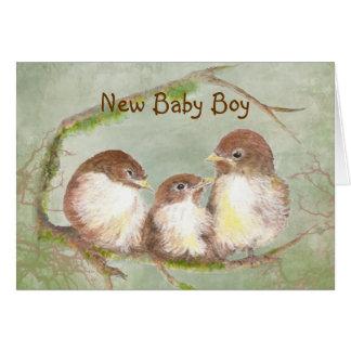 Congratulations New Baby Boy Cute Bird Family Card