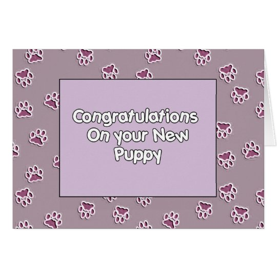 Congratulations On You New Puppy Card