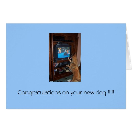 Congratulations on your new dog !!! card