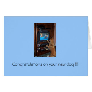 Congratulations on your new dog !!! greeting card