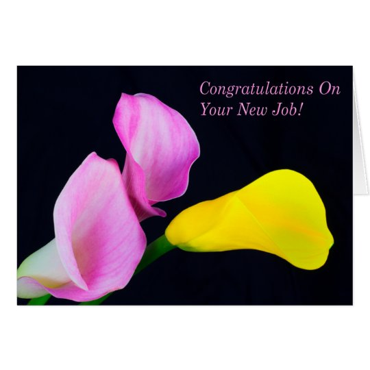 Congratulations On Your New Job Calla Lilies Card