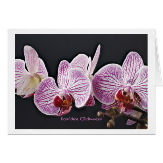 Congratulations orchids greeting cards