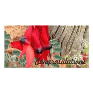 Congratulations photo card - Sturt's Desert Pea