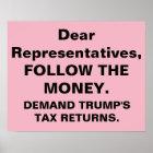 Congress Follow Money Trump Tax Returns Protest Poster
