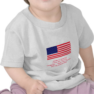 Congress -- Keep Your Hands OFF My Grand-kids Tee Shirt