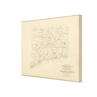 Congressional districts stretched canvas print