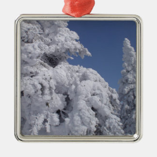 Conifer trees plastered with snow christmas ornament