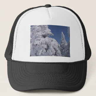 Conifer trees plastered with snow trucker hat