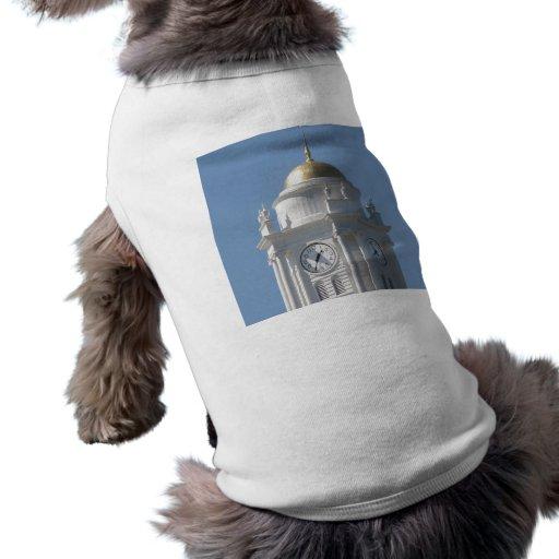 Connecticut Capital Dog Clothes
