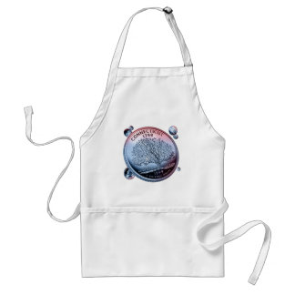 Connecticut coin - handful standard apron