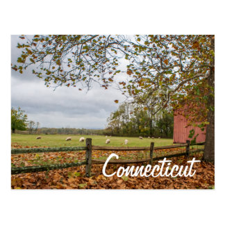 Connecticut Country Farm Postcard