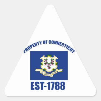Connecticut design triangle sticker