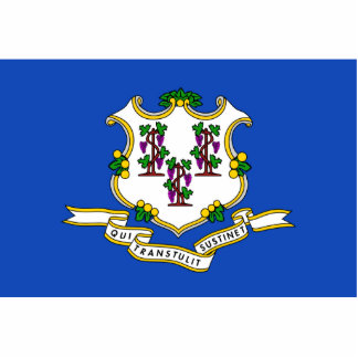 Connecticut Flag Magnet Cut Out