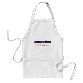 Connecticut-Full of surprises Standard Apron