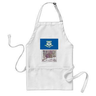 Connecticut Map and State Flag Adult Apron