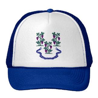 Connecticut Motto and Grape Vines Trucker Hat