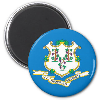 Connecticut  Official State Flag 6 Cm Round Magnet