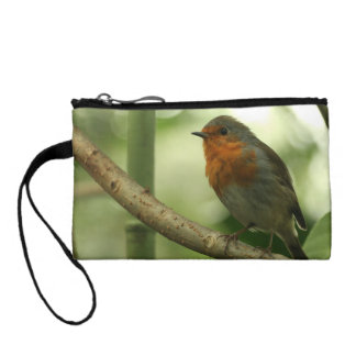 Connecticut Robin Coin Wallets