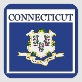 Connecticut State Flag Design Sticker