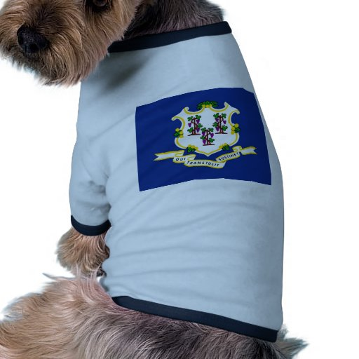Connecticut State Flag Pet Tee