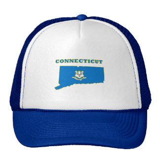 Connecticut State Flag Mesh Hats