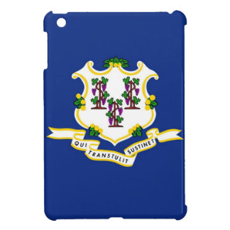 Connecticut State Flag iPad Mini Cases